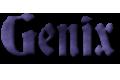 Przedsiębiorstwo Handlowo-Usługowe PHU Genix Genowefa Pfajfer